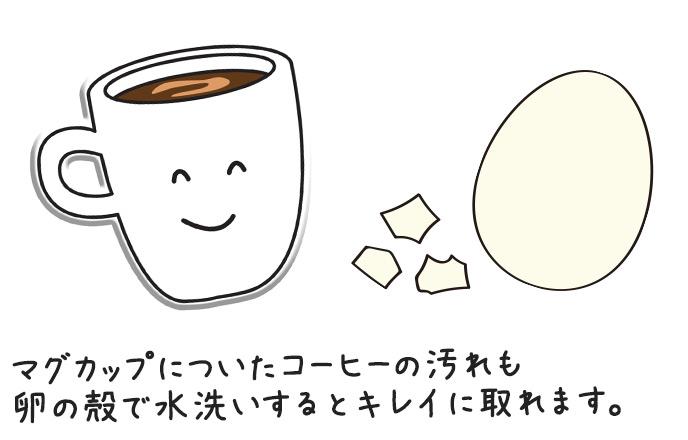 マグカップについたコーヒーの汚れも卵の殻で水洗いするとキレイに取れます。