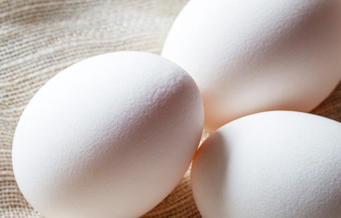 ざらざらとした卵の表面