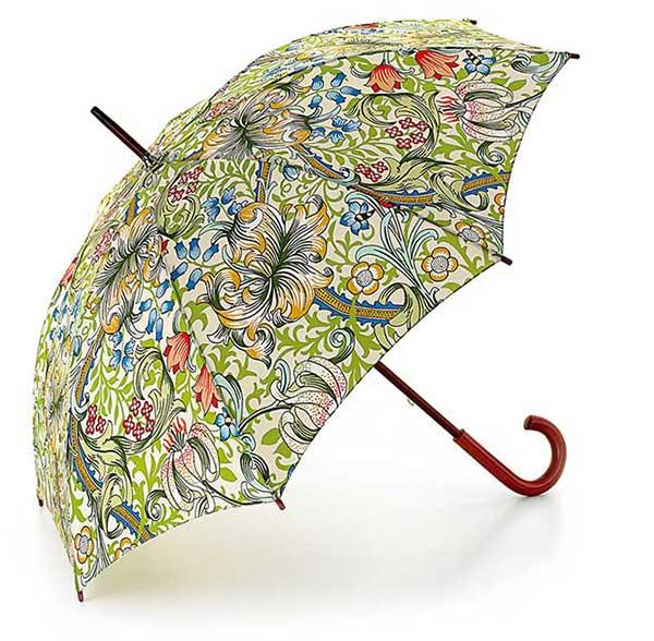 フルトンの傘ゴールデンリリー
