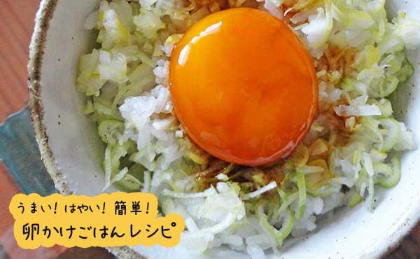 卵かけご飯レシピ・定番のたまごかけご飯を激旨アレンジ!