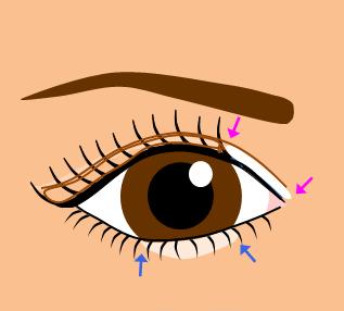 目頭から黒目まで白いアイシャドウ