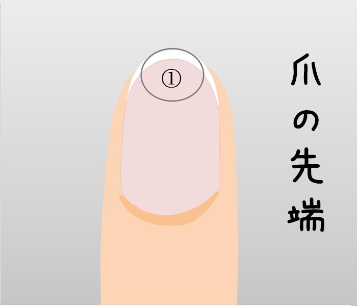 マニキュアは爪の先端から塗る