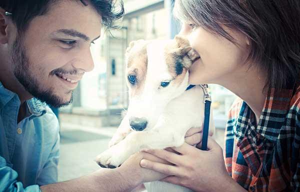犬と戯れるカップル