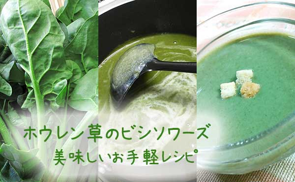 美味しいスープの作り方【ほうれん草のビシソワーズ】お手軽レシピ