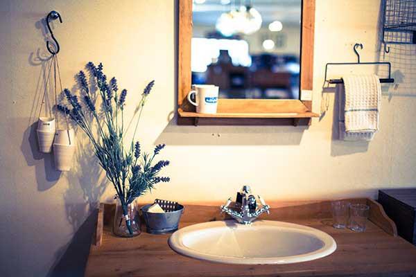 洗面台もキレイな部屋