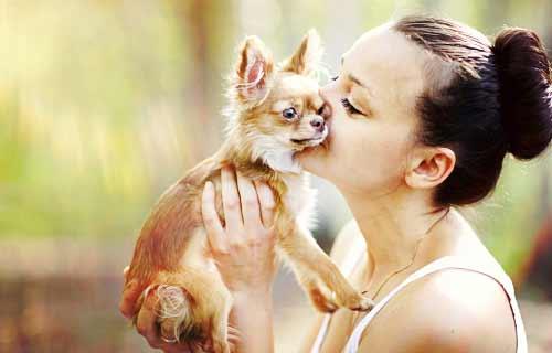 犬に話かける女性
