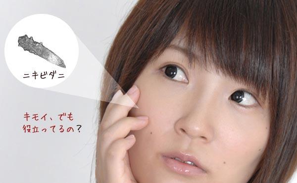 顔ダニを駆除しすぎるのはNG!美肌が遠のく?洗顔しない美容法