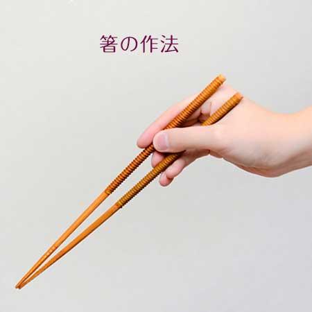 箸をもつ手