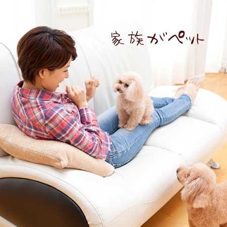 ペットと一緒の女性