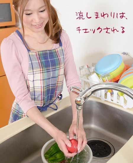 流しで野菜を洗う女性
