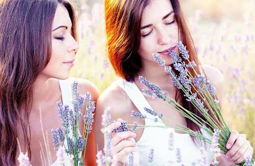 ラベンダーの香りを嗅ぐ女性