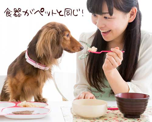 ペットと一緒にテーブルで食事する女性