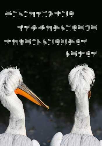 宇宙の言葉を話す動物