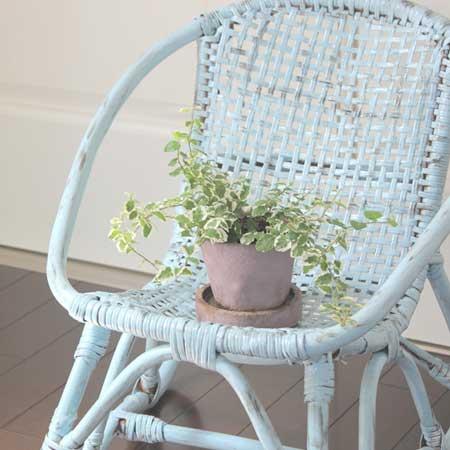 椅子の上に置かれた観葉植物