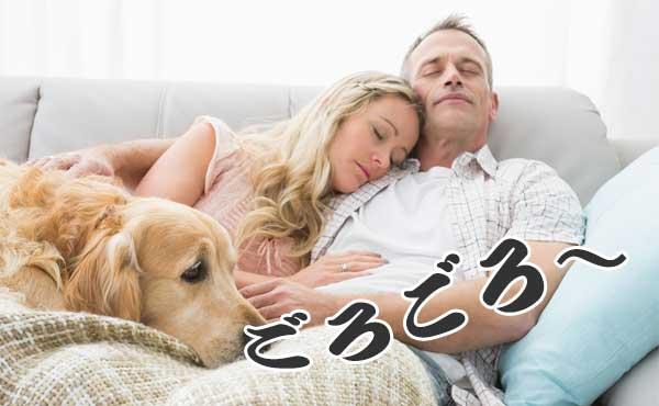 ソファで寝る夫婦と犬