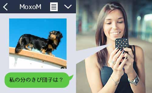 LINEで犬の写真を送る女性