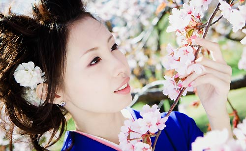 桜と着物美人