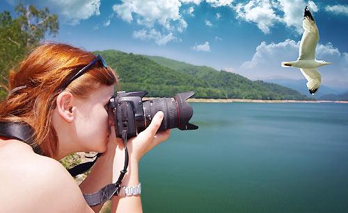 空を飛ぶ鳥をカメラで撮る女性