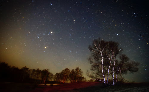 夏の草原と星空