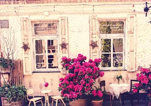 お花が満開な部屋