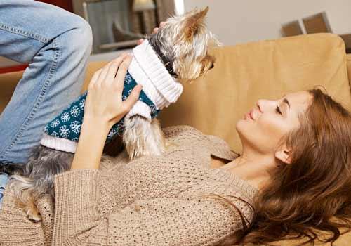 子犬と戯れる女性