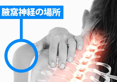 腋窩(えきか)神経の場所