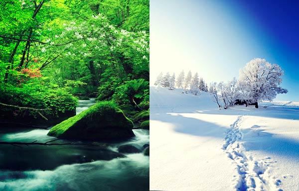 夏の森と冬の山