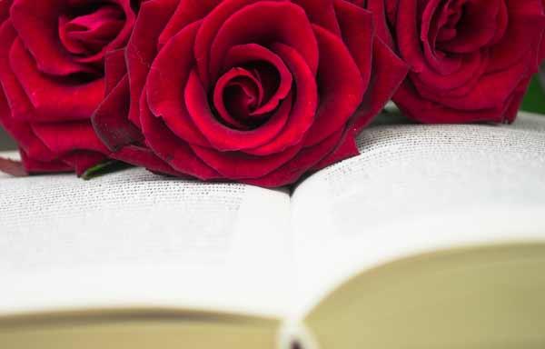 バラと聖書
