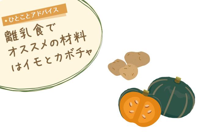 離乳食でオススメの材料はイモとカボチャ
