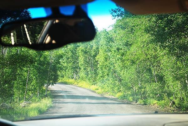 これより山道へ向かいます!