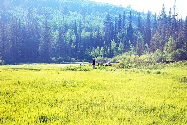 大草原でくつろぐ