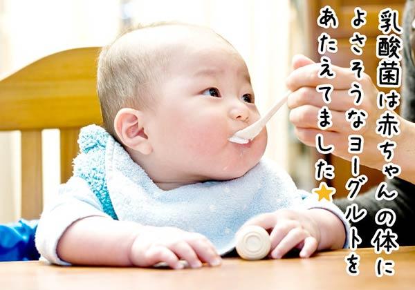乳酸菌は赤ちゃんの体に良さそうなヨーグルトをあたえてました