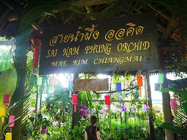 SAI NAM  PHUNG ORCHIDの外観