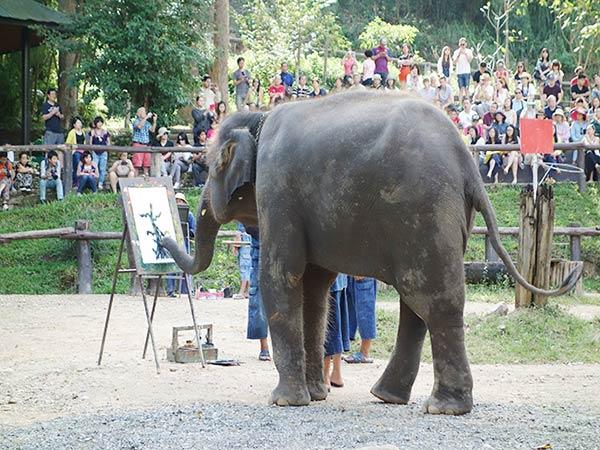 絵を描いている象