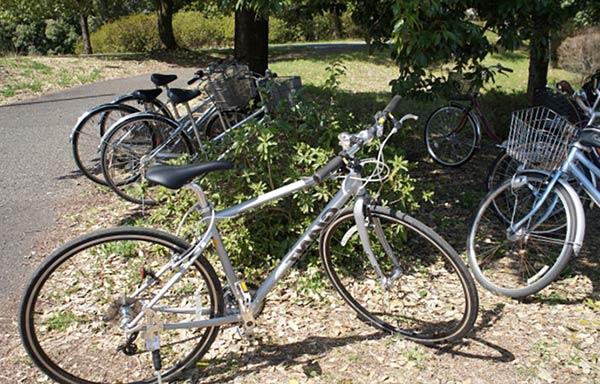 公園に停めた自転車