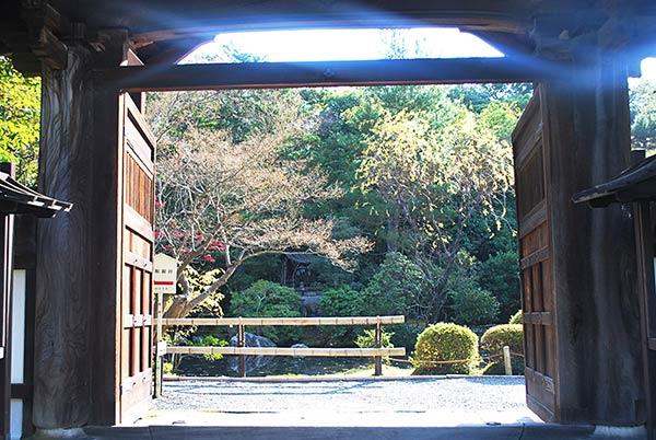 金地院の門