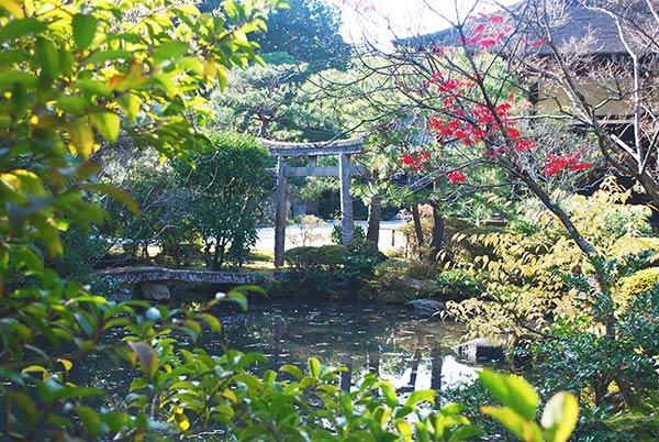 とても静かで落ち着く池です