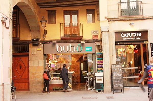 bubo Barの写真です