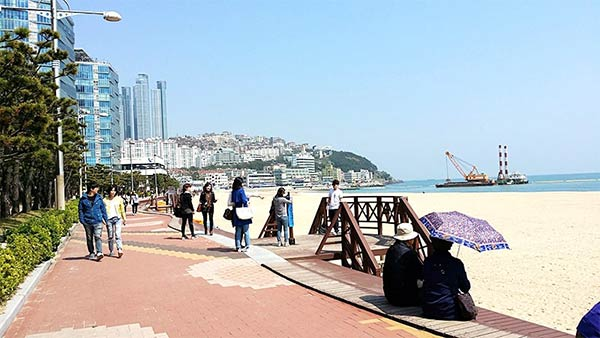 ここが韓国第2の都市「釜山(プサン)」です!