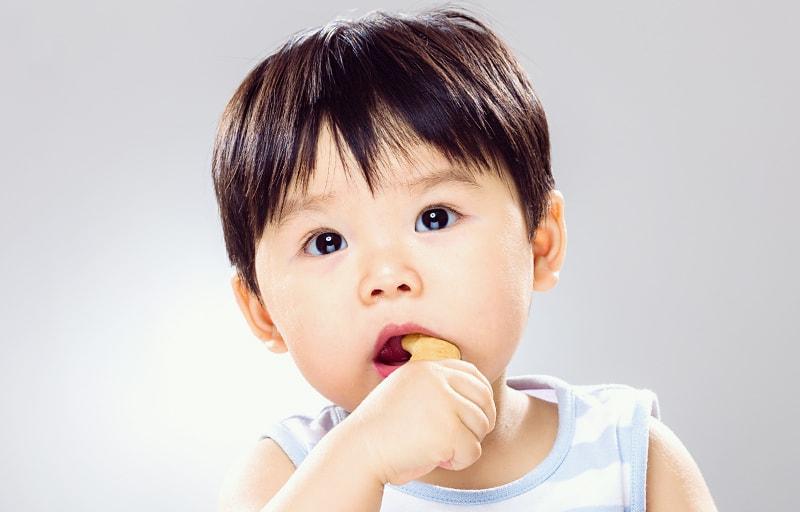 ビスケットを食べる赤ちゃん