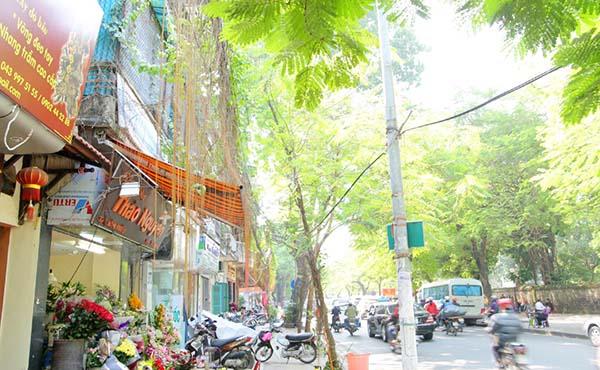ベトナム旅行特集
