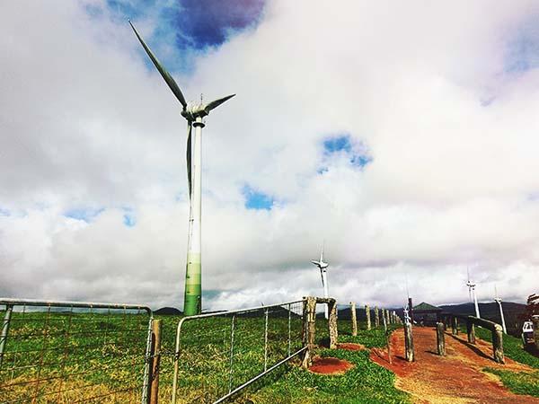 風車が並んでます