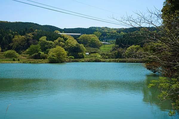 湖が美しい