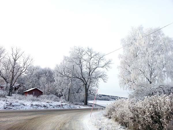 ストックホルム郊外の雪道