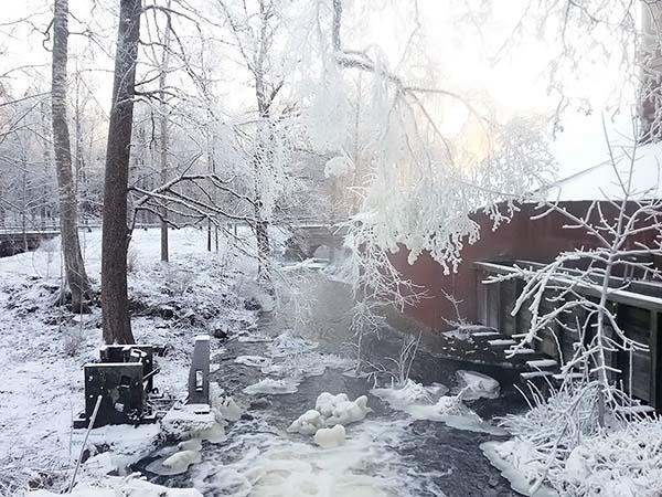 冬の森の小屋のように可愛らしい外観です