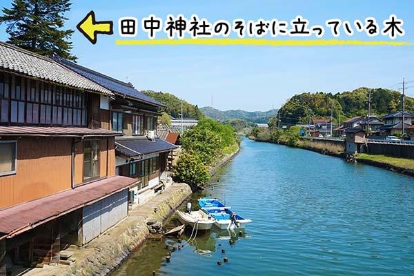 田中神社からの帰り