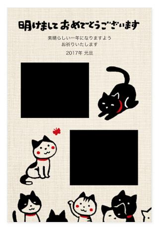 ネコのイラストが書かれた年賀状