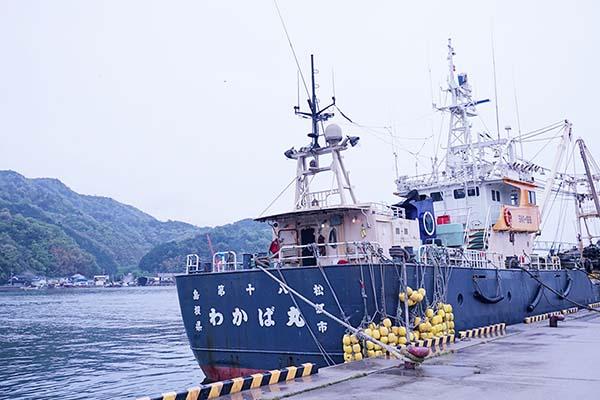 漁船を発見