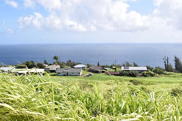 ハワイの大地