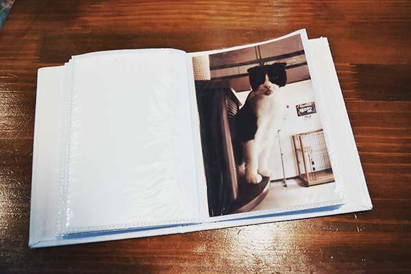 思い出が詰まった写真集